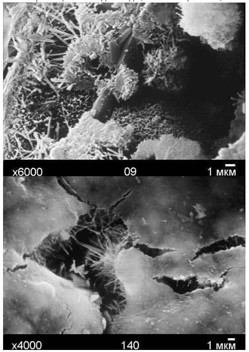 Образование игловидных кристаллов при проникающей гидроизоляции