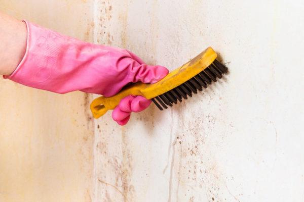 Зачистка поражённой стены металлической щёткой